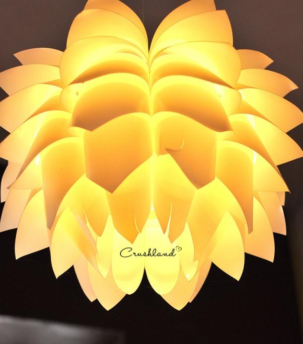 crushland (10)